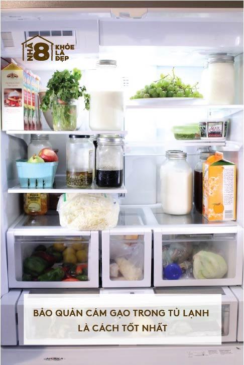 Có nên bảo quản cám gạo trong tủ lạnh hay không